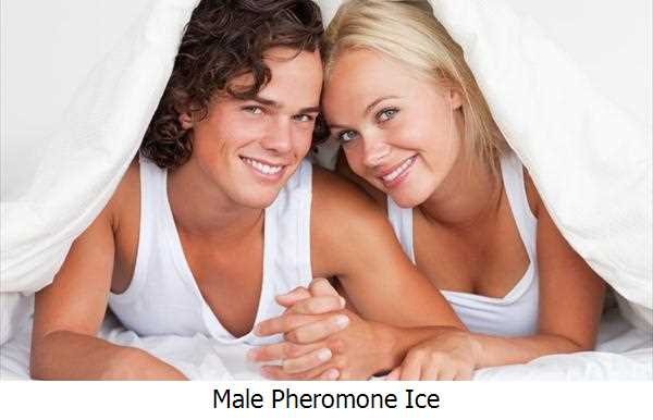 Male Pheromone Ice