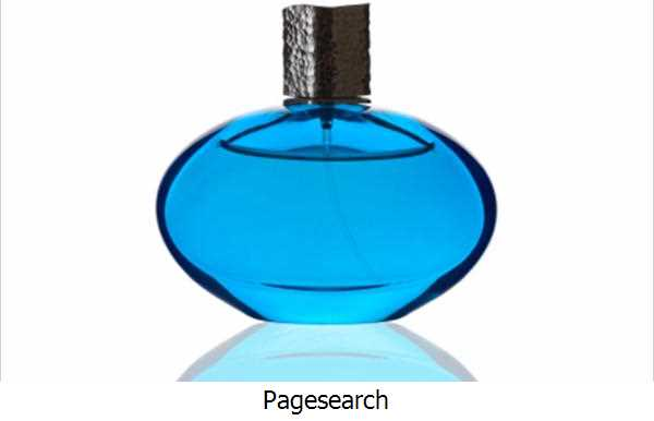 Pagesearch