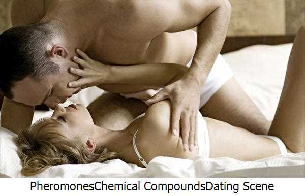 Pheromones,Chemical Compounds,Dating Scene