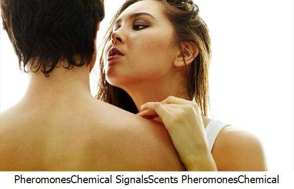Pheromones,Chemical Signals,Scents Pheromones,Chemical Compounds,Seduction,Pheromone Cologne