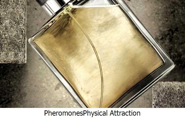 Pheromones,Physical Attraction