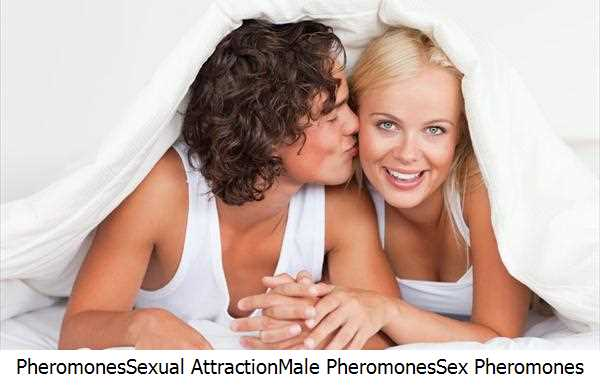 Pheromones,Sexual Attraction,Male Pheromones,Sex Pheromones