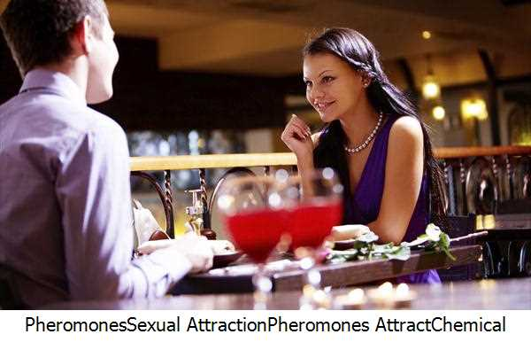 Pheromones,Sexual Attraction,Pheromones Attract,Chemical Signals,Male Pheromones,Human Pheromones