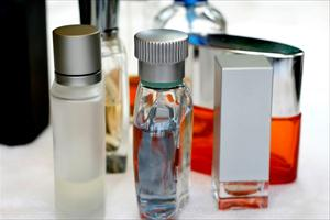 Pheromones Wikipedia: Pheromones For Males - What do They Do?